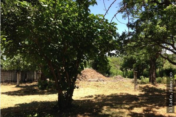 Foto de terreno habitacional en venta en  , álvaro obregón, miacatlán, morelos, 4641377 No. 04