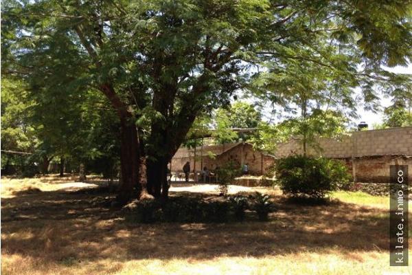 Foto de terreno habitacional en venta en  , álvaro obregón, miacatlán, morelos, 4641377 No. 06
