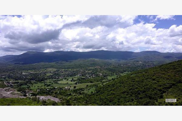 Foto de terreno comercial en venta en  , amacuzac, amacuzac, morelos, 13293601 No. 02