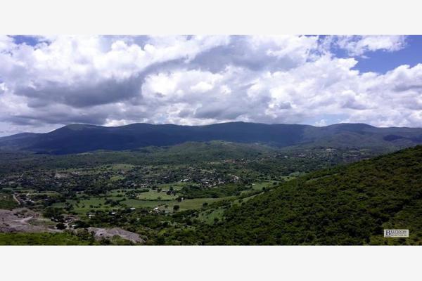 Foto de terreno comercial en venta en  , amacuzac, amacuzac, morelos, 13293601 No. 04
