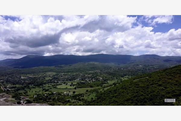 Foto de terreno comercial en venta en  , amacuzac, amacuzac, morelos, 13293601 No. 05