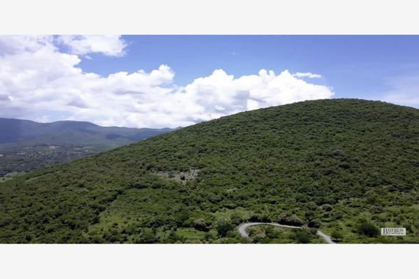 Foto de terreno comercial en venta en  , amacuzac, amacuzac, morelos, 13293601 No. 06