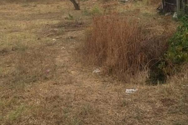 Foto de terreno habitacional en venta en  , amatlán de quetzalcoatl, tepoztlán, morelos, 3137449 No. 03