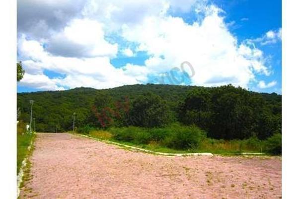 Foto de terreno habitacional en venta en  , amozoc centro, amozoc, puebla, 8850659 No. 08