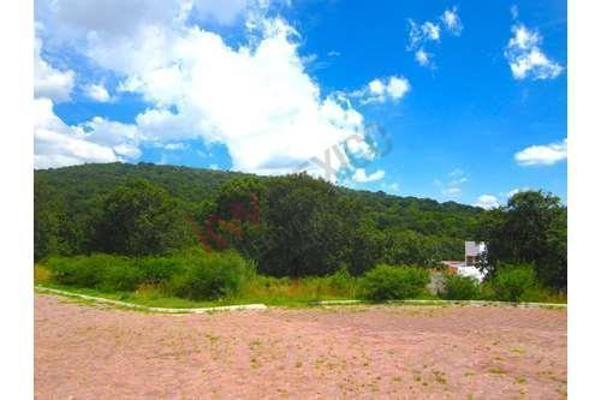 Foto de terreno habitacional en venta en  , amozoc centro, amozoc, puebla, 8850659 No. 09