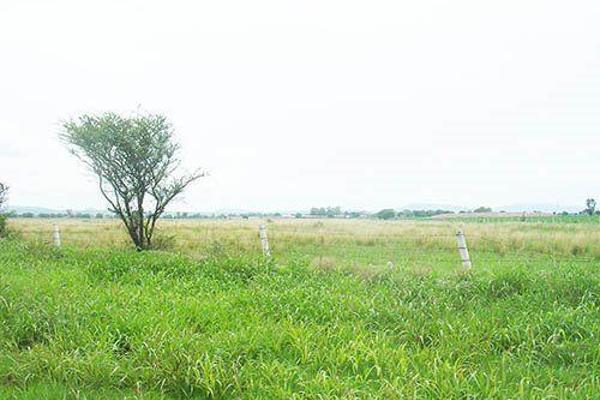 Foto de terreno habitacional en venta en  , ampliación galeras oeste, colón, querétaro, 8051003 No. 01