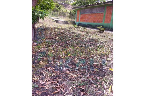 Foto de terreno habitacional en venta en  , anáhuac, poza rica de hidalgo, veracruz de ignacio de la llave, 7474047 No. 08