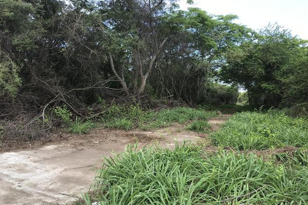 Foto de terreno habitacional en venta en  , anáhuac, pueblo viejo, veracruz de ignacio de la llave, 13352824 No. 06