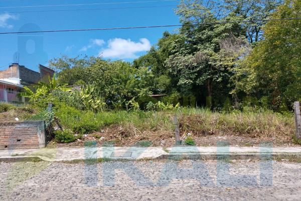 Foto de terreno habitacional en renta en  , anáhuac, tuxpan, veracruz de ignacio de la llave, 8398684 No. 03
