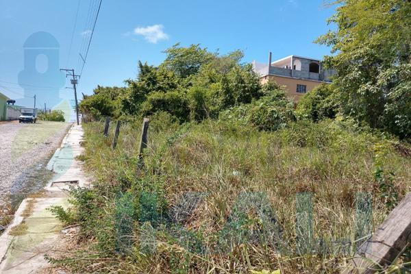 Foto de terreno habitacional en renta en  , anáhuac, tuxpan, veracruz de ignacio de la llave, 8398684 No. 04