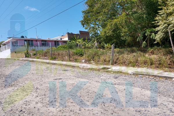 Foto de terreno habitacional en renta en  , anáhuac, tuxpan, veracruz de ignacio de la llave, 8398684 No. 07