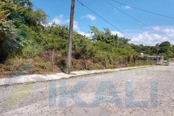 Foto de terreno habitacional en renta en  , anáhuac, tuxpan, veracruz de ignacio de la llave, 8398684 No. 08