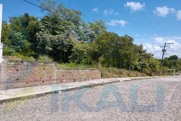 Foto de terreno habitacional en renta en  , anáhuac, tuxpan, veracruz de ignacio de la llave, 8398684 No. 09