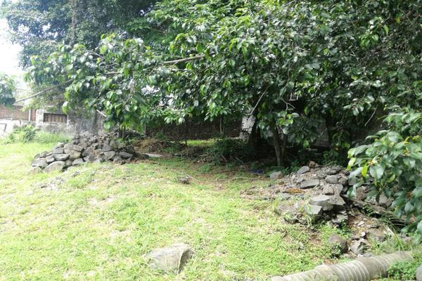 Foto de terreno habitacional en venta en andador el venado , teopanzolco, cuernavaca, morelos, 5823154 No. 04