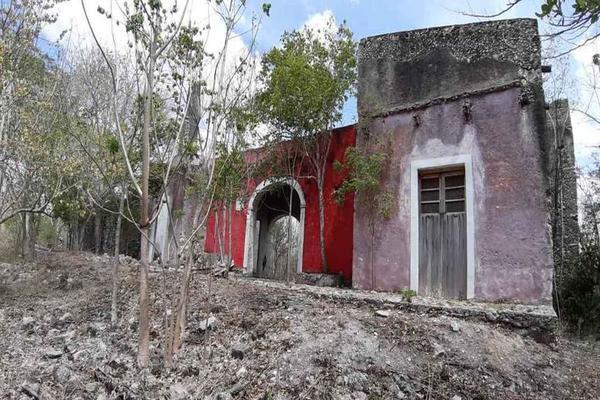 Foto de terreno habitacional en venta en antigua hacienda , izamal, izamal, yucatán, 19541184 No. 03