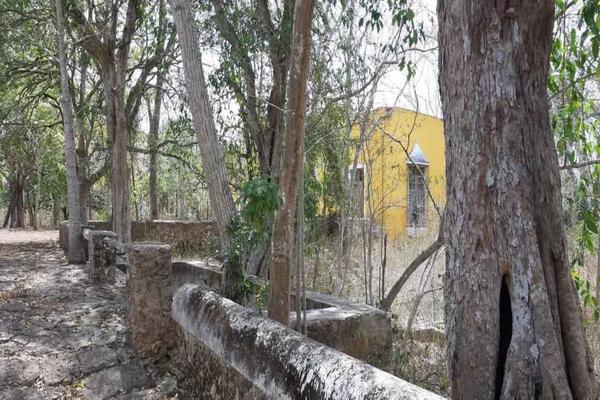Foto de terreno habitacional en venta en antigua hacienda , izamal, izamal, yucatán, 19541184 No. 07
