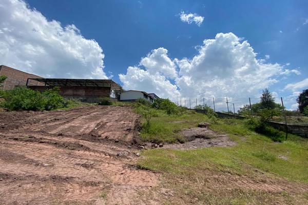 Foto de terreno habitacional en venta en antigua vía ffcc , los pinos, guanajuato, guanajuato, 17449783 No. 06