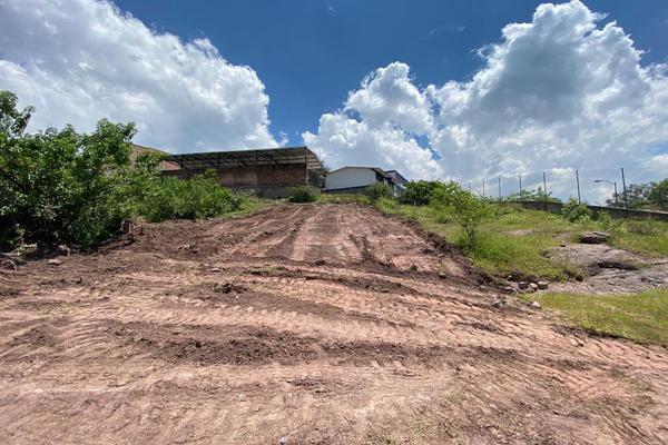 Foto de terreno habitacional en venta en antigua vía ffcc , los pinos, guanajuato, guanajuato, 17449783 No. 07