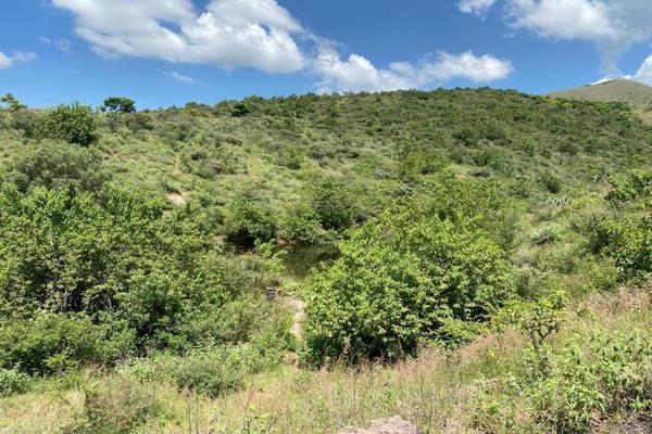 Foto de terreno habitacional en venta en antigua vía ffcc , los pinos, guanajuato, guanajuato, 17449783 No. 14