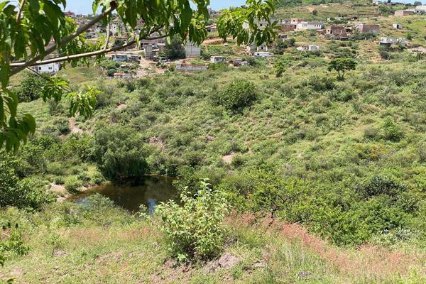 Foto de terreno habitacional en venta en antigua vía ffcc , los pinos, guanajuato, guanajuato, 17449783 No. 15