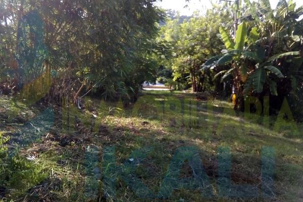 Foto de terreno habitacional en venta en  , antonio m. quirasco, coatzintla, veracruz de ignacio de la llave, 5890024 No. 01