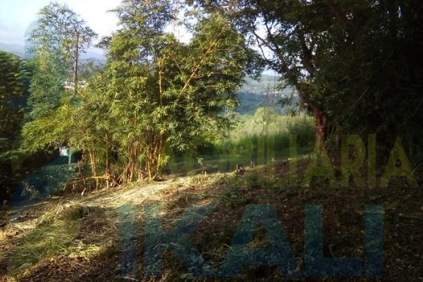 Foto de terreno habitacional en venta en  , antonio m. quirasco, coatzintla, veracruz de ignacio de la llave, 5890024 No. 02