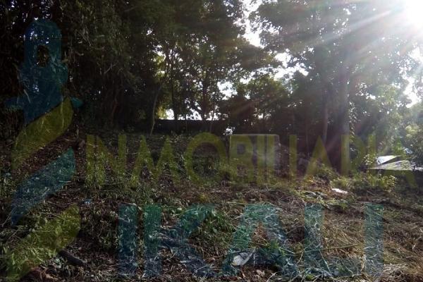Foto de terreno habitacional en venta en  , antonio m. quirasco, coatzintla, veracruz de ignacio de la llave, 5890024 No. 03