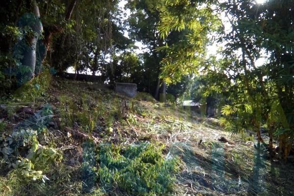 Foto de terreno habitacional en venta en  , antonio m. quirasco, coatzintla, veracruz de ignacio de la llave, 5890024 No. 04