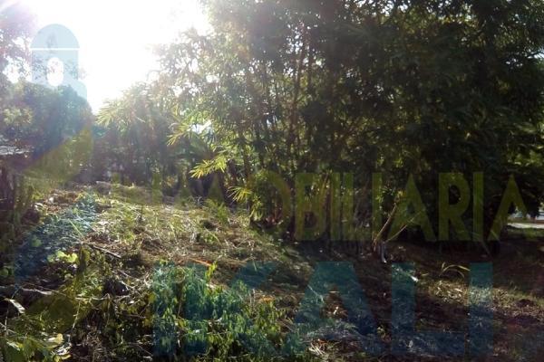Foto de terreno habitacional en venta en  , antonio m. quirasco, coatzintla, veracruz de ignacio de la llave, 5890024 No. 05