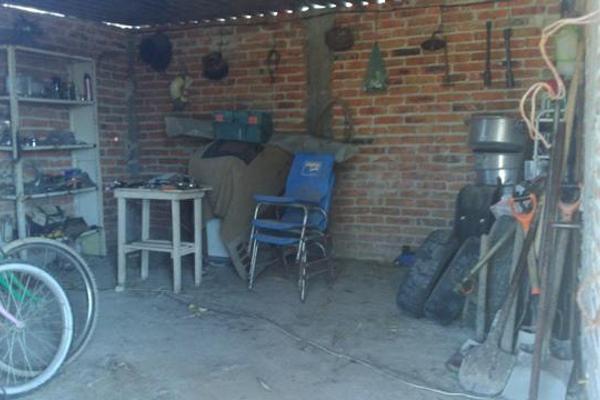 Foto de rancho en venta en  , apaseo el alto centro, apaseo el alto, guanajuato, 14021802 No. 06