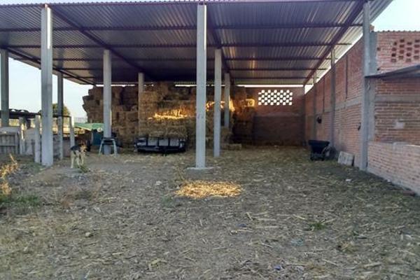 Foto de rancho en venta en  , apaseo el alto centro, apaseo el alto, guanajuato, 14021802 No. 07