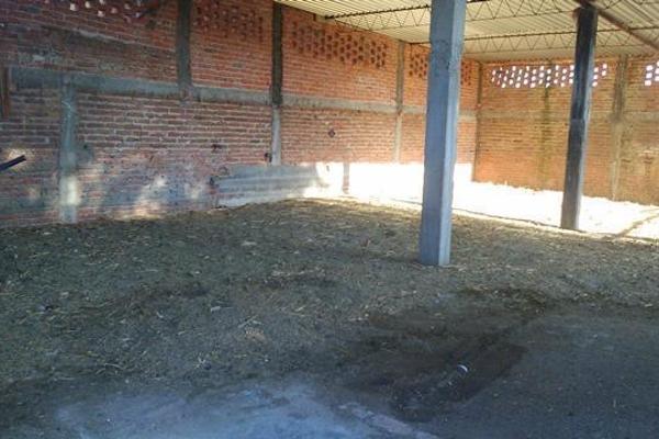Foto de rancho en venta en  , apaseo el alto centro, apaseo el alto, guanajuato, 14021802 No. 08
