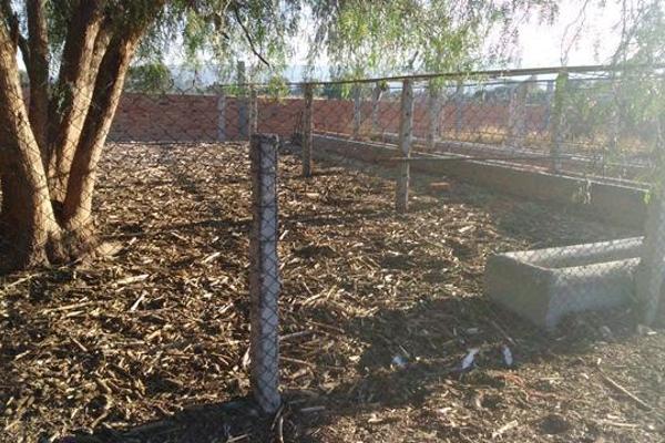 Foto de rancho en venta en  , apaseo el alto centro, apaseo el alto, guanajuato, 14021802 No. 14
