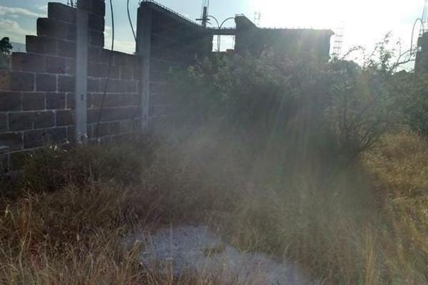 Foto de rancho en venta en  , apaseo el alto centro, apaseo el alto, guanajuato, 14021802 No. 15