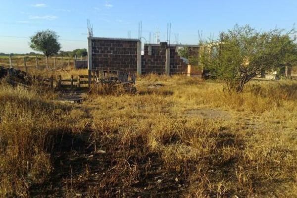 Foto de rancho en venta en  , apaseo el alto centro, apaseo el alto, guanajuato, 14021802 No. 17