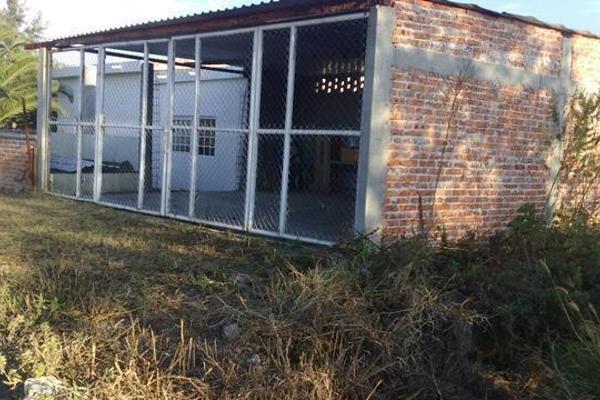 Foto de rancho en venta en  , apaseo el alto centro, apaseo el alto, guanajuato, 14021802 No. 23