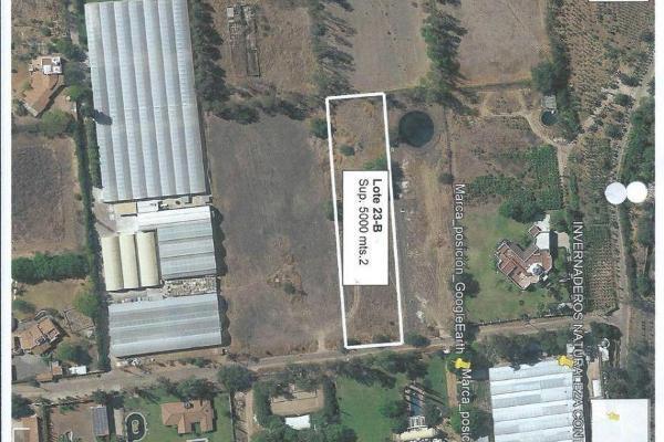 Foto de terreno habitacional en venta en  , apaseo el grande centro, apaseo el grande, guanajuato, 14021836 No. 04