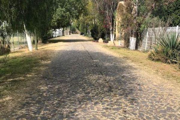 Foto de terreno habitacional en venta en  , apaseo el grande centro, apaseo el grande, guanajuato, 14021836 No. 08