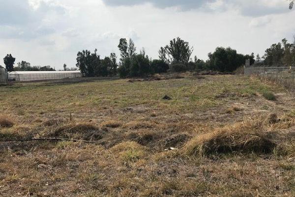 Foto de terreno habitacional en venta en  , apaseo el grande centro, apaseo el grande, guanajuato, 14021836 No. 09
