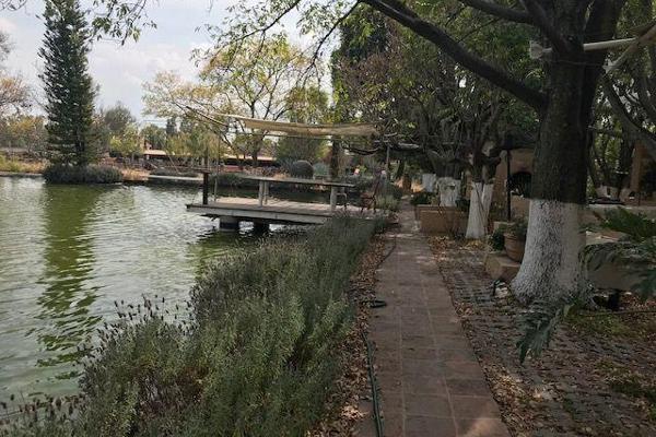 Foto de terreno habitacional en venta en  , apaseo el grande centro, apaseo el grande, guanajuato, 14021836 No. 12