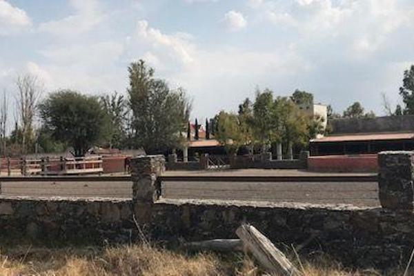 Foto de terreno habitacional en venta en  , apaseo el grande centro, apaseo el grande, guanajuato, 14021836 No. 14