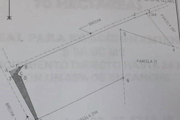 Foto de terreno habitacional en venta en  , aquiles serdán, aquiles serdán, chihuahua, 7312687 No. 01