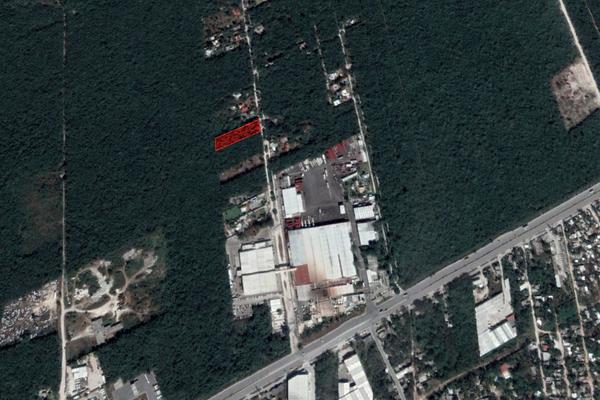 Foto de terreno habitacional en venta en  , arboledas, benito juárez, quintana roo, 16704468 No. 05