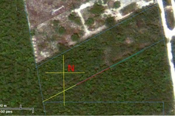 Foto de terreno habitacional en venta en  , arboledas, benito juárez, quintana roo, 16704468 No. 06