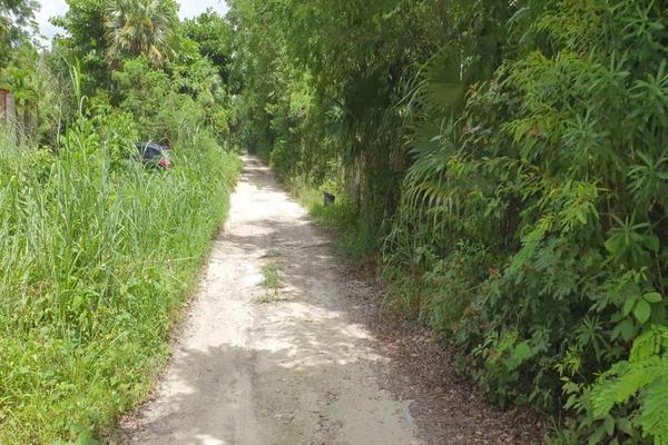 Foto de terreno habitacional en venta en  , arboledas, benito juárez, quintana roo, 16704468 No. 10
