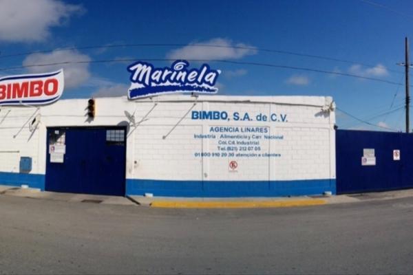 Foto de nave industrial en venta en  , arboledas del valle, linares, nuevo león, 14038234 No. 01