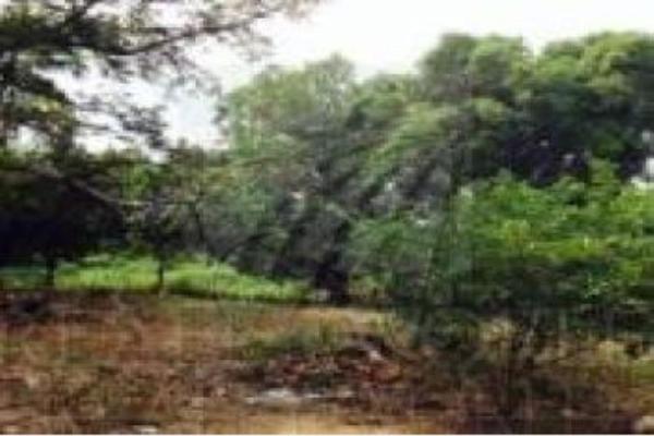 Foto de terreno habitacional en venta en  , arriaga centro, arriaga, chiapas, 5442507 No. 02
