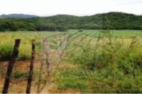 Foto de terreno habitacional en venta en  , arriaga centro, arriaga, chiapas, 5442507 No. 04