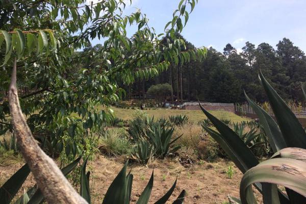 Foto de terreno habitacional en venta en arroyo 0, cañada de alférez, lerma, méxico, 9173941 No. 02