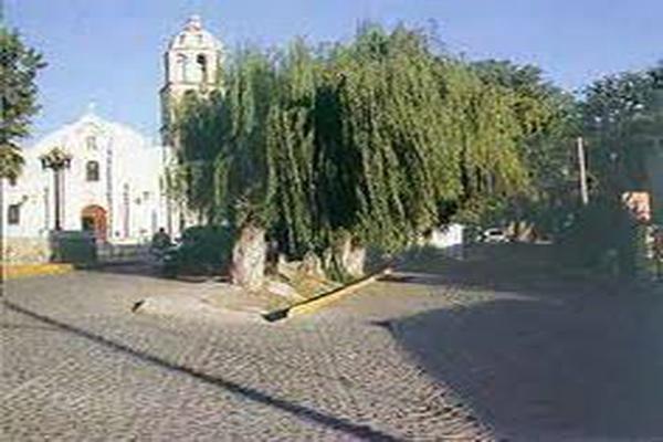 Foto de terreno habitacional en venta en  , arteaga centro, arteaga, coahuila de zaragoza, 14029052 No. 04